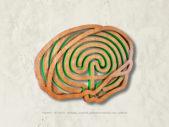 Gehirn-Irrgarten