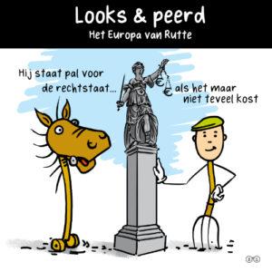 Cartoon Looks & peerd
